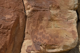 Ute rock art; hard to say what animal some of these petroglyphs are portraying.