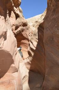 Erin hiking through Little Wild Horse