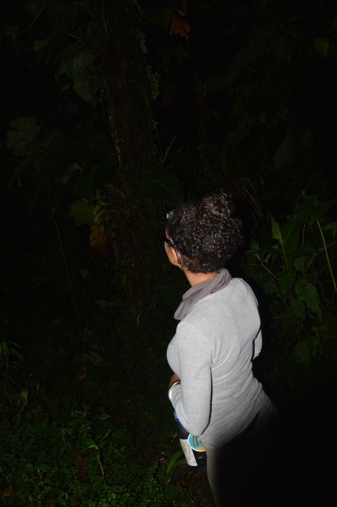 You look better facing away from the camera as if looking into the dark, mysterious jungle as a jaguar sneaks closer...