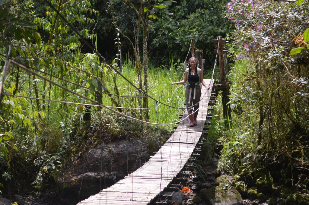 At first Erin was a little nervous about this bridge. Quite possibly with good reason. We read in the manager's log how one of the cables came out with guests on the bridge once (no one was hurt) and one of my major projects ended up being replacing a lot of bad planks on the bridge. Still it added an enormous amount of rugged, jungle mystique.